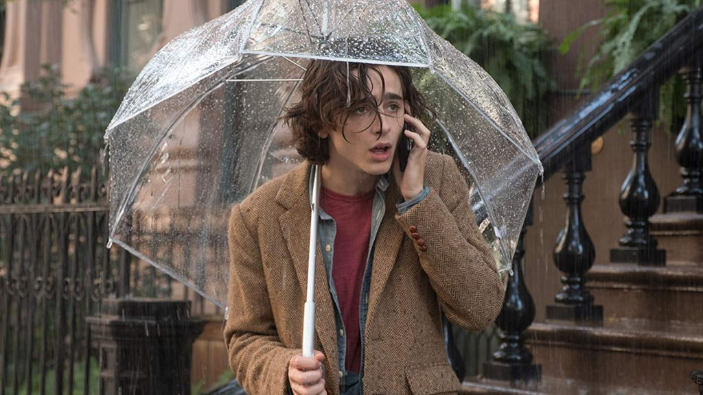 Timothee Chalamet dalam A Rainy Day in New York (2019)